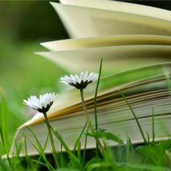 Have a spring book club on Go Beyond Book Club